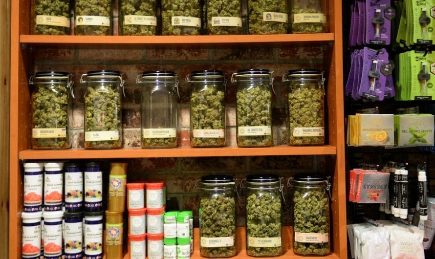 Some parents are turning to medical marijuana to treat ADHD instead of Adderall