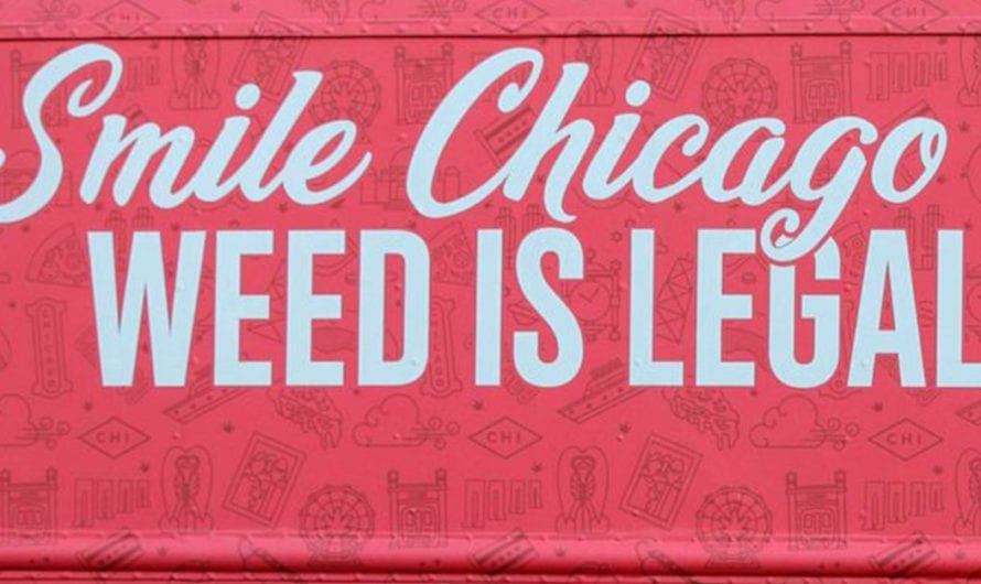 It's just a weed, Chicago